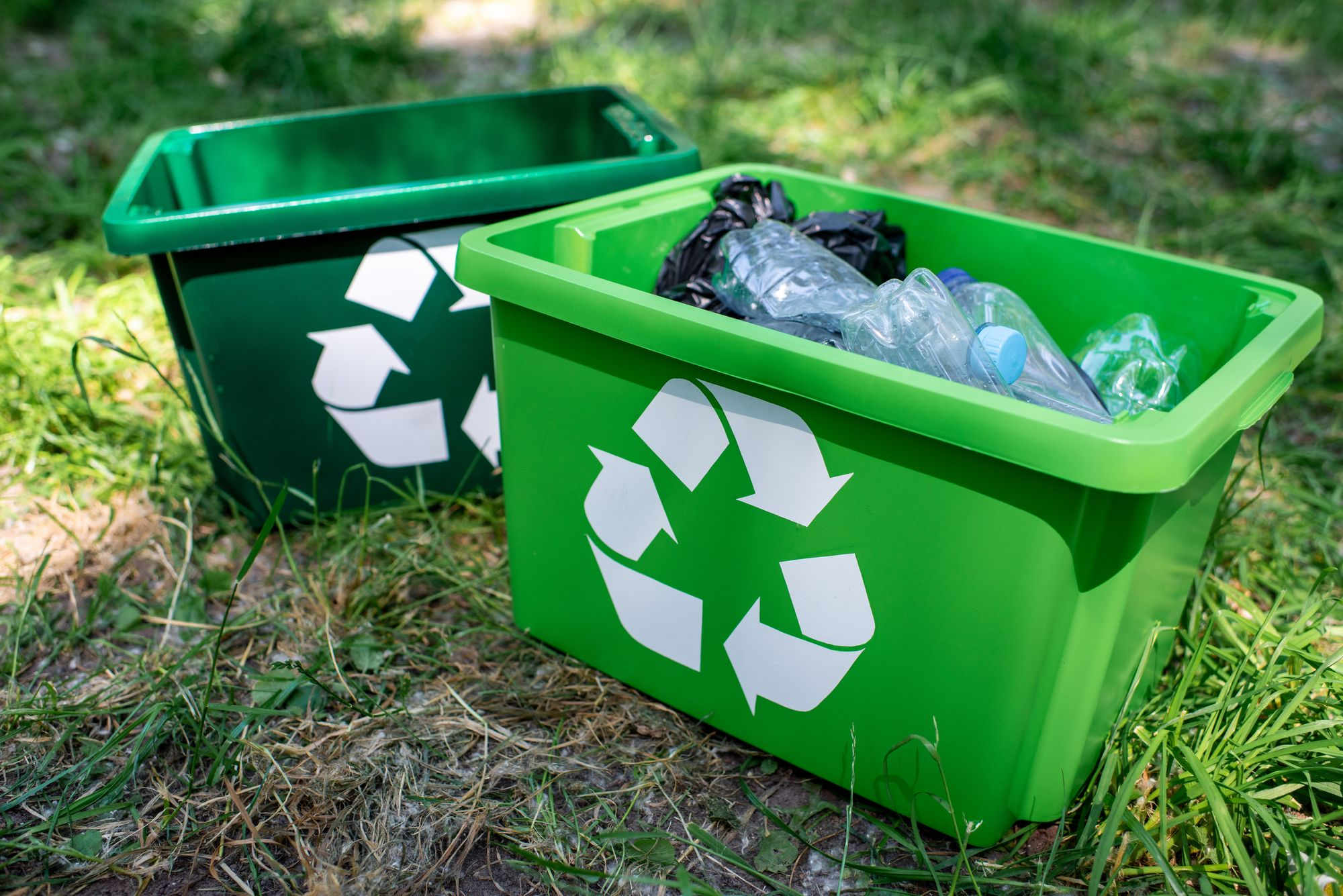 How to Reduce Your Plastic Footprint in 2020 - Plastic Collectors