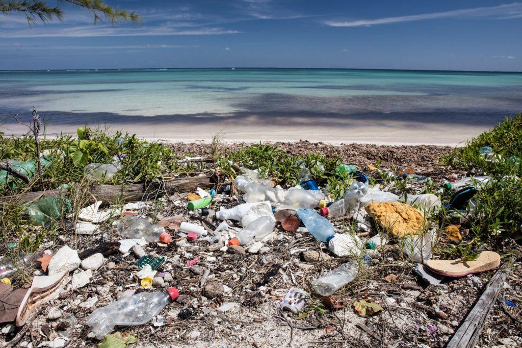 pollution des plages