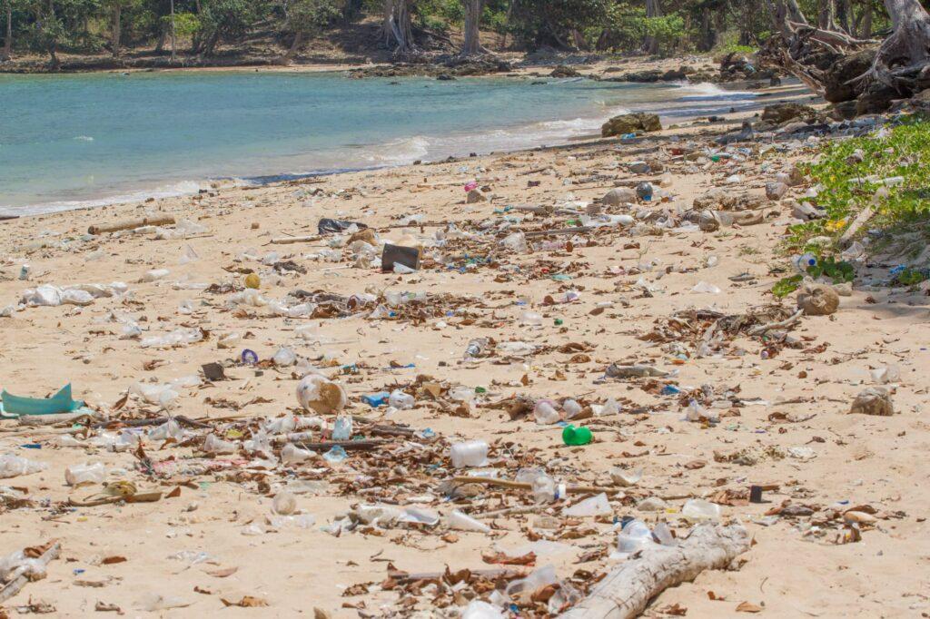 plastic straws pollution