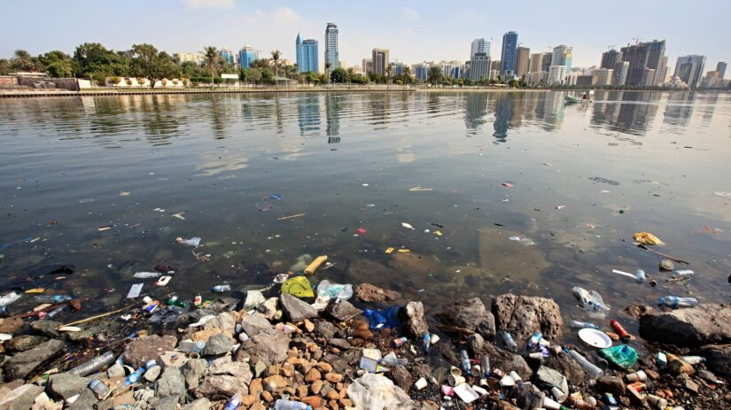 Water Pollution Solutions: 5 Simple Things You Can Do | Plastic Collectors