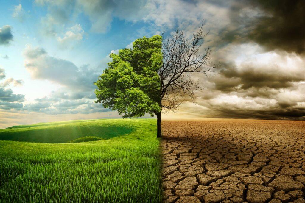 Lösung zur globalen Erwärmung